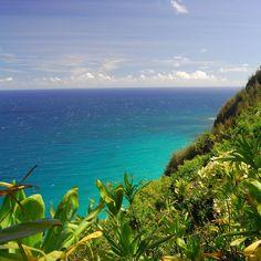 Coast of Hawaii