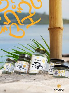 Extra virgin coconut oil from Yokaba. Small family own oil mill in Philippines cold pressing organic, unrefined virgin coconut oil. Coconut Palm Tree, Extra Virgin Coconut Oil, Oil Pulling, Palm Trees, Philippines, Organic, Cold, Health, Palm Plants