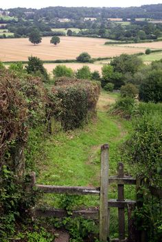 "Photo of the gentle Kentish countryside by Adam Swaine. Kent is divided, depending which part you come from, one is either a ""Man of Kent"" or a ""Kentish Man"" ( or Maid of Kent etc)"