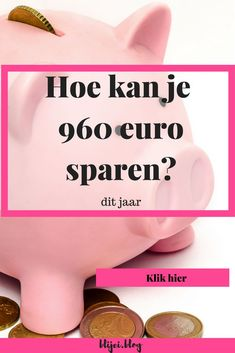 Hoe kan je 960 euro sparen?
