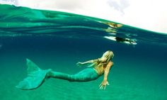 "Amazing Mermaid Shot.  Check Out The Novel I Wrote ""The Mermaid Of Avalon"" For More Mermaid & Surfer Lore. http://www.amazon.com/The-Mermaid-of-Avalon-ebook/dp/B00889TW3Q"
