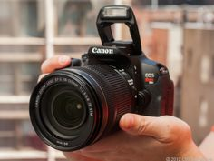 Having trouble choosing among Canon's dSLRs? This guide can help you get started