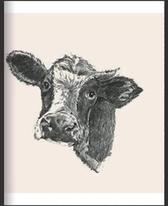 All Animals Photos, Animal Cards, Stuffed Animals, Cow, Moose Art, Streaming Movies, English Writing, Writing Skills, Education