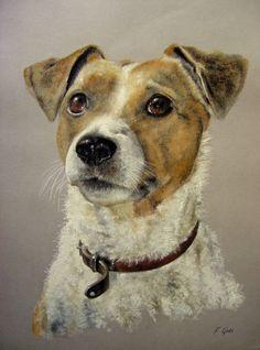 Pastel chien Jack Russel Terrier (Dessin), 30x40 cm par Frederic Goze