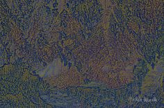Cogito ergo sum (penso dunque sono) vuole essere un metafora dell'essere, i colori della natura in un groviglio atto a simulare la complessità del pensiero umano