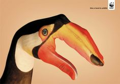 """Give a hand to wildlife"" - WWF campaign developed at Saatchi & Saatchi Simko with artist Guido Daniele. #art"