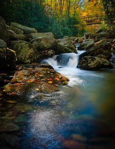 Autumn Leaves.......Boone Fork Creek right off the Blue Ridge Parkway intersects the Tanawa Trail on the slopes of Grandfather Mountain in the high country of northwest North Carolina.