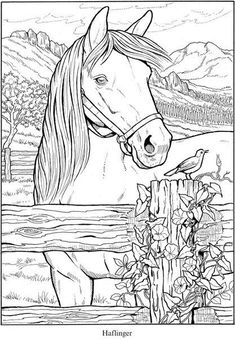 free horse printable coloring pages pin by jenny culligan on horse coloring pages printable free coloring pages horse Horse Coloring Pages, Coloring Pages To Print, Colouring Pages, Coloring For Kids, Coloring Sheets, Coloring Books, Mandala Coloring, Free Coloring, Free Horses