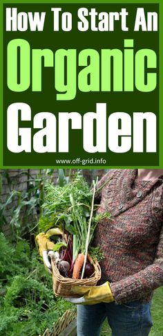 Off Grid Survival, Survival Tips, Farm Pictures, Garden Pictures, Container Vegetables, Container Gardening, Organic Gardening, Gardening Tips, Backyard Farming