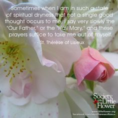 Daily Inspiration from St. Therese of Lisieux: Sometimes I am in such