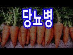 당뇨 혈당수치 뚝 떨어뜨리는 10가지 방법 - YouTube Korean Food, Beauty Care, Diabetes, Remedies, Health Fitness, Healthy, Youtube, Magnolias, Tips