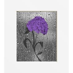 Purple Bathroom Floral Wall Art Photography, Purple Bath Decor, Modern...  ($19) ❤ Liked On Polyvore Featuring Home, Bed U0026 Bath, Bath, Bath  Accessories, ... Part 53