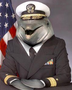 I shall listen to the captain.