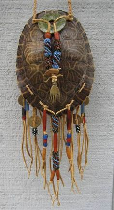 How Logn Can Painted Turtles Live Witohut Food