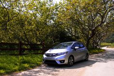 Sometimes all the Honda Fit needs is a little shade from the trees during a long drive.