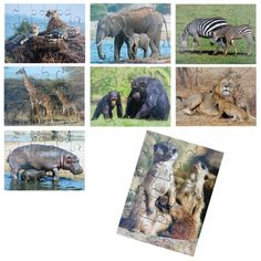 Buy Wild Animals and Their Young Jigsaws from our Science range - 'Jungle Animals' Resources, Animal Resources, Wildlife Topic Resources - @ Early Years Resources Jungle Animals, Wild Animals, Glitter Furniture, Outdoor Mirror, Giraffe, Elephant, Wooden Table And Chairs, Yarn Painting, Painting Accessories