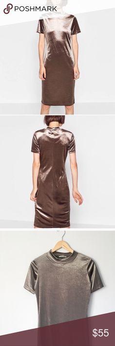 5e9830b3d9c Zara    NWOT velvet mock neck dress NWOT Zara Trafaluc mock neck velvet  midi dress