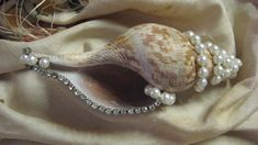 A touch of elegance on the beachside holiday table decorated shells Seashell Art, Seashell Crafts, Beach Crafts, Diy Crafts, Beach Christmas, Coastal Christmas, Christmas Crafts, Holiday Ornaments, Shells And Sand