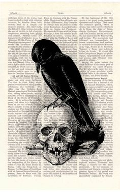 * Crow on the Skull ~ by PRRINT *