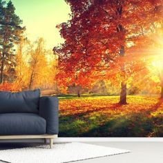 Search Results | Wallsauce AU Wall Murals, Tree Murals, Autumn Scenes, Library Images, Wall Wallpaper, That Look, Search, Painting, Art