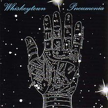 if you like Ryan Adams you should check out Whiskeytown, specifically their last release 'Pneumonia'