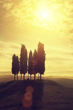 #LGLimitlessDesign #Contest Tuscan sunrise