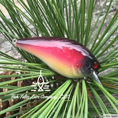 We call this sweet little square bill Cherry Bomb. It is hand painted with airbrushing and finished with a very high gloss and durable UV protected epoxy finish. Fishing Tools, Going Fishing, Fishing Bait, Fishing Tackle, Bass Fishing, Lure Blanks, Homemade Fishing Lures, Bass Lures, Fish Tales
