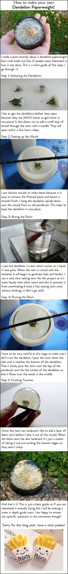 The post Dandelion paperweight tutorial! 2019 appeared first on Jewelry Diy. Cute Crafts, Crafts To Do, Diy Resin Crafts, Dandelion Paperweight, Dandelion Art, Papier Diy, Creation Deco, Ideias Diy, Crafty Craft