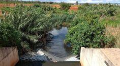 Caesb é multada em R$ 87 mil por despejar esgoto em reserva ambiental Relatório do Ibram encontrou dejetos liberados pela tubulação da empresa que podem prejudicar o solo da reserva no Noroeste