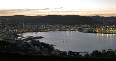 Wellington at dusk, seen from Mt Vic Travel Guides, Travel Tips, Stuff To Do, Things To Do, New Zealand Houses, When It Rains, New Zealand Travel, Capital City, Dusk