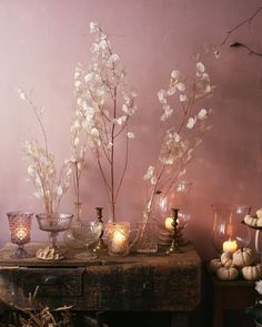 Collections of glass jars and honesty.