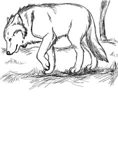Wolf Skizze mit Paint