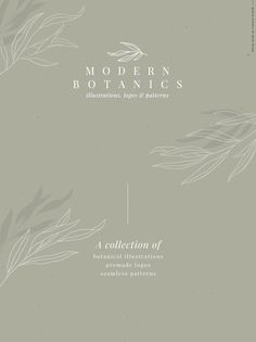 Modern Botanics illustrations logos by Skyla Design on Creative Market, Illustration Simple, Pattern Illustration, Botanical Illustration, Graphic Illustration, Design Illustrations, Graphisches Design, Logo Design, Graphic Design, Branding Design