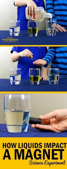 Liquid Impacts a Magnet Try this simple science experiment and watch how different liquids impact magnetic force.Try this simple science experiment and watch how different liquids impact magnetic force. Magnets Science, Preschool Science, Science Classroom, Science Education, Science For Kids, Science Activities, Science Facts, Science Fun, Earth Science
