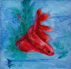 betta fish acrylic painting - Google Search