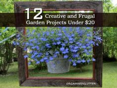 12 Creative and Frugal Garden Projects Under $20