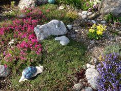 Steingarten von Silvia