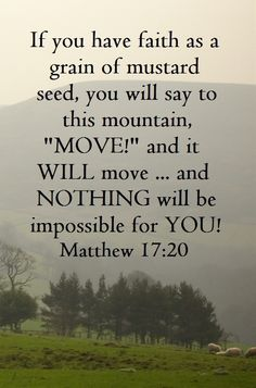 """He replied, """"Because you have so little faith. Truly I tell you, if you have faith as small as a mustard seed, you can say to this mountain, 'Move from here to there,' and it will move. Nothing will be impossible for you."""" (Matthew 17:20 NIV)"""
