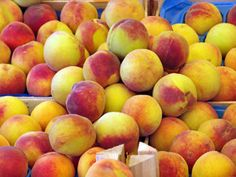 Early Elberta - $9 This is an early ripening version of the world famous Elberta peach. It's rich, sweet, yellow flesh and golden yellow blushed red skin make the Early Elberta the best there is. This large peach ripens in early July, and requires 750 chill hours.