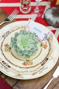 mismatched china + succulent.