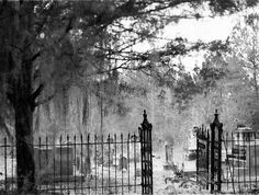 Spooky Cemetery on a dark, ethereal day