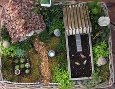 Como de Fazer hum Jardim feericamente diminuto EM UM vasilhame: HGTV Gardens