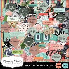 Digital Scrapbooking Kits   Variety is the spice of life-(MC)   Everyday, Family   MyMemories Confirmation Page, Paint Shop, Photoshop Elements, Just Go, Spice Things Up, Photo Book, Digital Scrapbooking, Design Elements, Mosaic