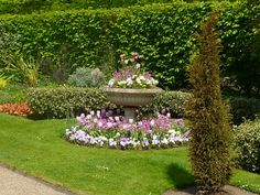 Regent's Park in London is just a short stroll from Mayfair Beautiful Park, Most Beautiful, Open Air Theater, Summer Is Here, Pride And Prejudice, London, Plants, Plant, London England