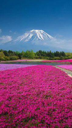 Mt Fuji, Japan | Smart Phone Wallpaper and Lock Screens