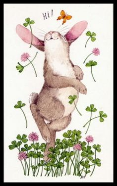 252-GC-Linda-K-Powell-RABBIT-Blank-Greeting-Note-Card