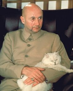 Blofeld and his beautiful cat, from James Bond. I need to watch some James Bond… Chat Web, Donald Pleasence, Bond Series, Timothy Dalton, Austin Powers, James Bond Movies, Bond Girls, Sean Connery, Cat People