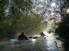 Kayakking in beautiful places like the Biesbosch