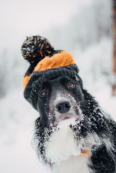 18 Exciting Winter Photography Tips and Ideas to Try!