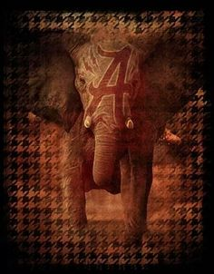 Two Sided Elephant Houndstooth by Greg Gamble Alabama Football Print